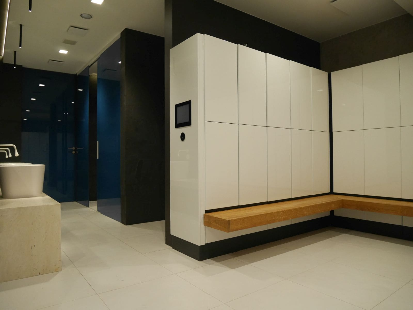 Luxury and stylish lockers for changing room personal